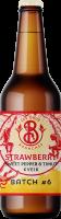 visuel-bier-6